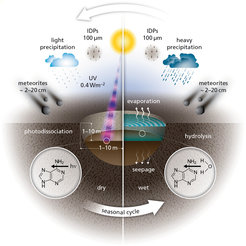 A schematic representation of the various influences acting on chemicals in warm little ponds during the dry phase and wet phase of the cycle: infalling meteorites and interplanetary dust grains (IDGs), seepage, evaporation, re-filling through precipitation, hydrolysis of more complex molecules and photo-dissociation by UV photons from the Sun.